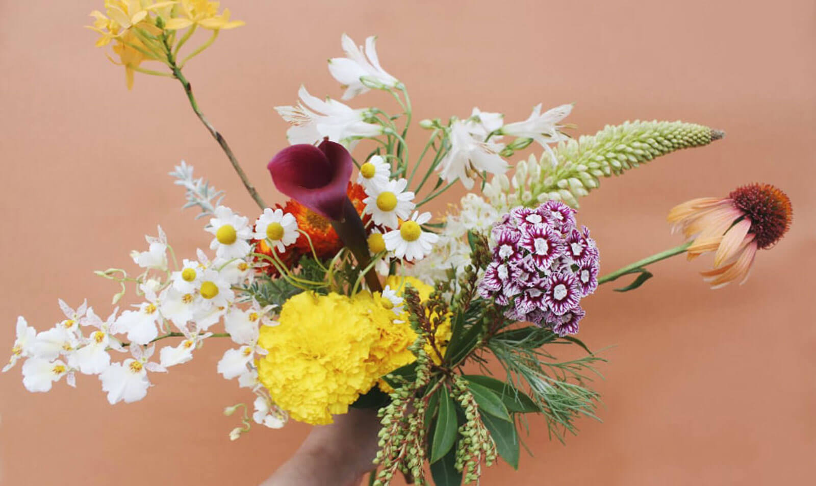 "Flower Delivery ""fiore soffitta"""