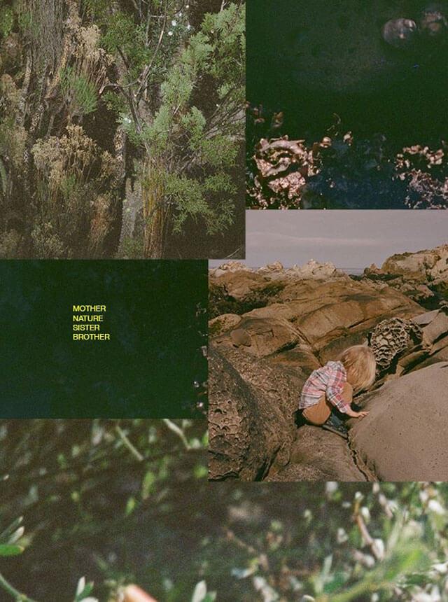 Online Gallery|Sam Falls