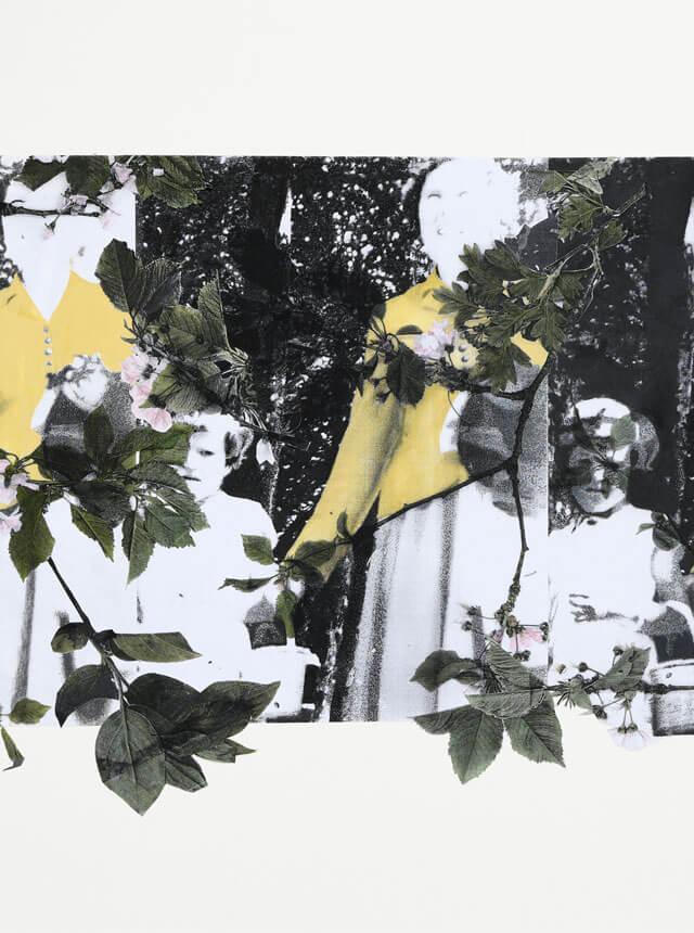 Online Gallery|Denise Zygadlo